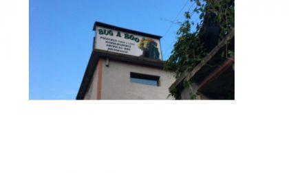 Chivasso, incendio al ristorante Bug a Boo