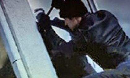 Nuovi furti in Collina, la gente ora ha paura
