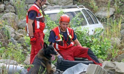 Settimo, ecco dove i cani da soccorso imparano a salvare vite tra le macerie (il video)