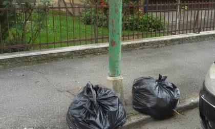 Settimo: tagliano l'erba, ma lasciano in strada dei sacchetti di rifiuti
