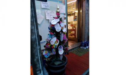 Dopo il furto dell'albero di Natale gli studenti di Torrazza ne realizzano un altro