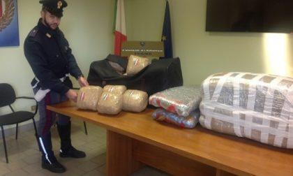 Arrestato corriere della droga: in auto nascondeva 50 kg di marijuana