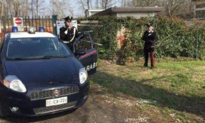Castiglione, ladri scatenati: spruzzano spray urticante ai cani per entrare in casa