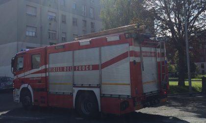 Incendio. a fuoco due tir delle giostre