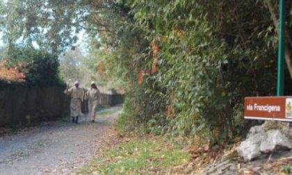 La Via Francigena candidata per rientrare nel patrimonio dell'Unesco