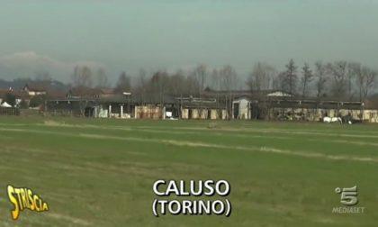 Le telecamere di Striscia a Caluso