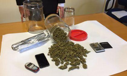 Marijuana in cantina, arrestato Christian Mammino