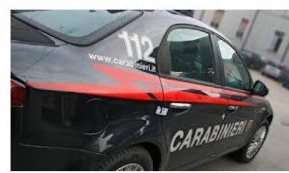 """Uomo denunciato per """"macellazione abusiva"""" nel Canavese"""