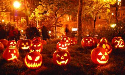 Halloween drogato sequestrati due chili di metanfetamine