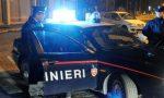 Guardia giurata sventa furto