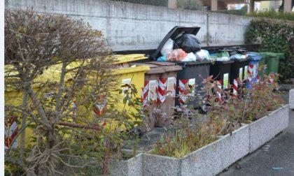 Piano rifiuti, adesso arriva l'ispettore ambientale