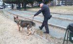 Carabinieri finti corridori per bloccare gli spacciatori al parco LE FOTO
