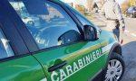 La città perde anche i Carabinieri Forestali