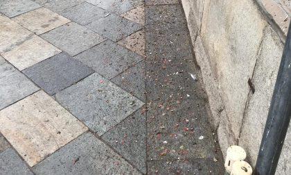 """Guerra ai piccioni, il sindaco: """"I cittadini devono tenere pulito"""""""