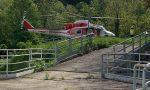 Due cervi finiscono nel canale, interviene anche l'elicottero