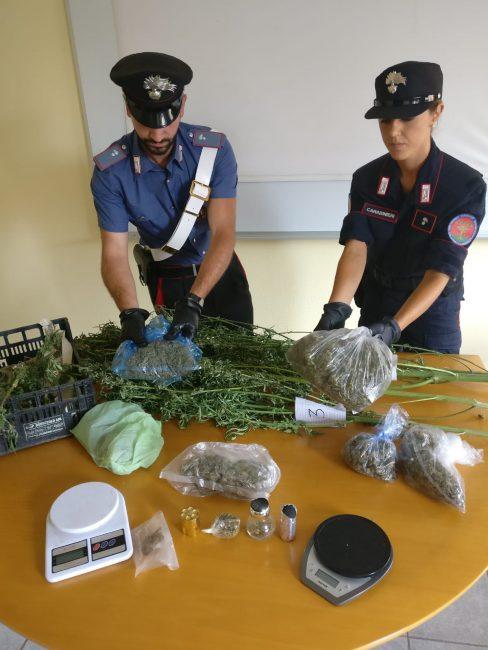 serra marijuana castelrosso droga
