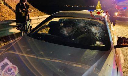Grandine, auto distrutte e case allagate LE FOTO