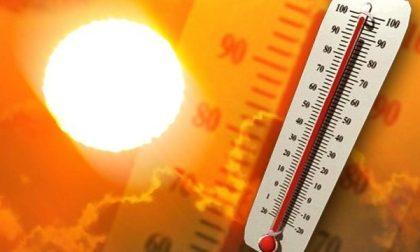 Caldo da bollino rosso, il termometro arriva a 40 gradi