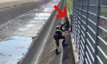 Cane caduto nel canale, salvato dai Vigili del Fuoco VIDEO