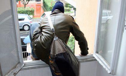 Allarme furti in casa, intensificati i controlli in città