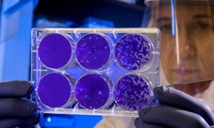 Coronavirus, altri 46 morti in poche ore in Piemonte