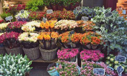 Da oggi i fioristi possono riaprire