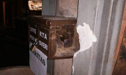 Orrore in Duomo: ubriaco devasta la sacrestia LE FOTO