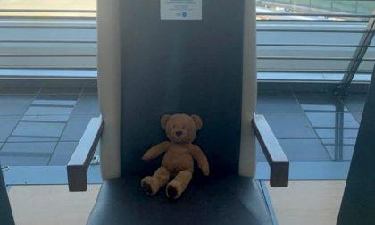 Orsacchiotto dimenticato all'aeroporto: si cerca il suo padroncino