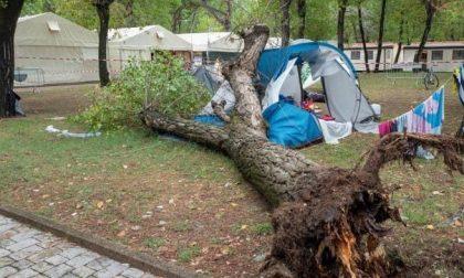 Albero si abbatte sulla tenda di una famiglia di Torino: morte due bambine
