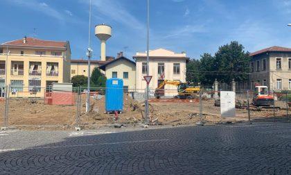 """Il Comune abbatte gli alberi in piazza ma scoppia la polemica: """"Erano sani"""""""