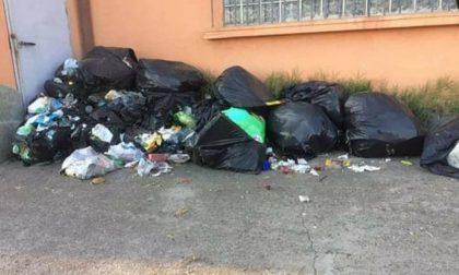 «Chi sporca la città ha le ore contate»:  il sindaco di Cigliano non tollera il degrado