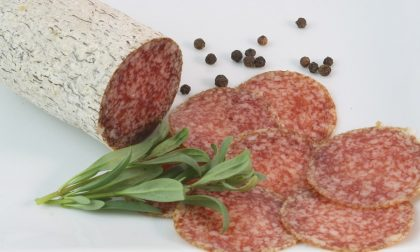Allerta alimentare: richiamato lotto di salame a rischio salmonella