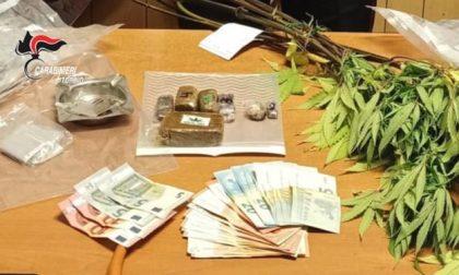 Corrieri della droga fermati con 2,2 kg di Amnèsia