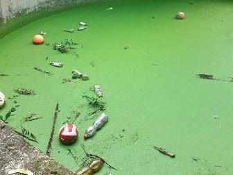 Bambino cade dentro ad una vasca di liquami, voleva recuperare il pallone