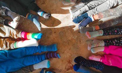 Oggi 5 febbraio è la Giornata dei calzini spaiati
