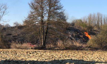 Incendio vicino al lago, potrebbe essere doloso LE FOTO