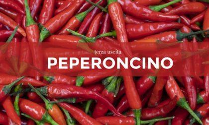 Tutti ortisti: in edicola con la Nuova Periferia i semi di peperoncino