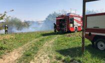 Cavagnolo, incendio sterpaglie LE FOTO