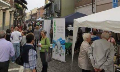 Feste in paese, Saluggia prova con un primo evento a luglio