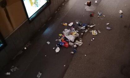 Vandali spargono i rifiuti in mezzo alla strada