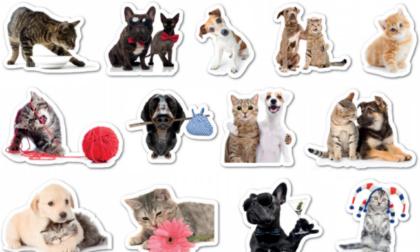 Originali stickers in regalo con La Nuova Periferia