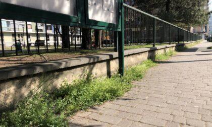 Bimbi giocano a calcio in via Po, multati dai vigili